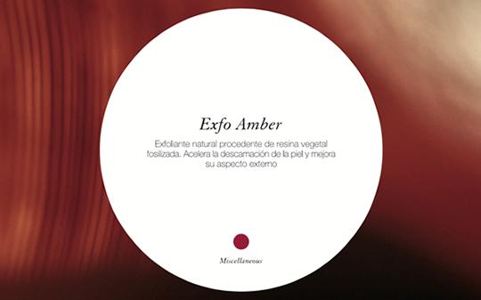 EXFO-AMBER